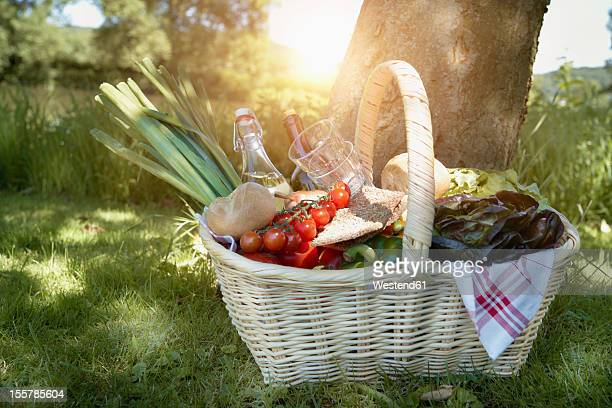 germany, cologne, view of picnic basket - picknick stock-fotos und bilder