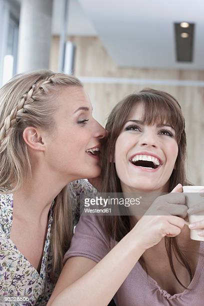 Germany, Cologne, Young women in cafe, laughing, close-up