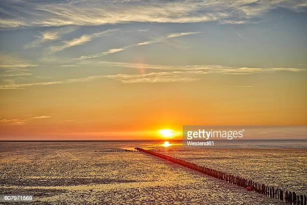 Germany, Dithmarschen, Friedrichskoog-Spitze, Sunset at the North Sea tidelands