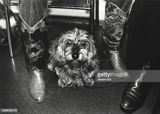 Germany, dog between the feet of his master in the waiting room of a small animal practitioner