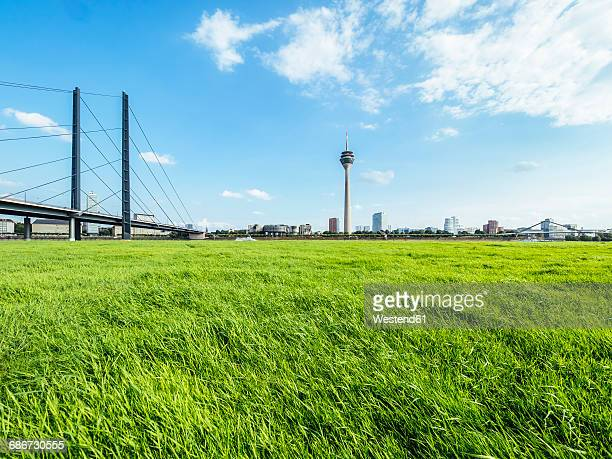 Germany, Duesseldorf, view to Rhine bridge and Rhine tower with meadow in the foreground