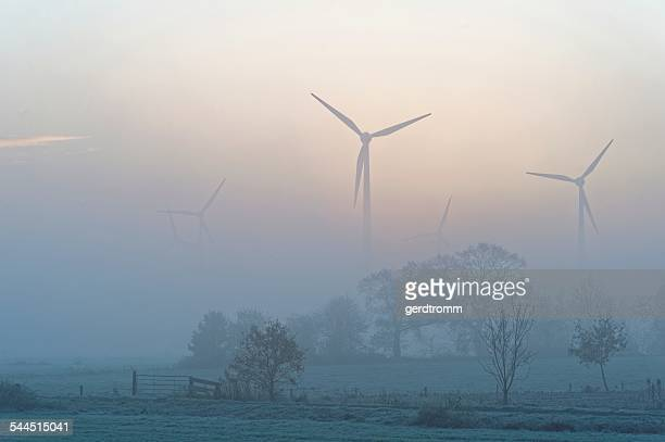 Germany, East Frisia, Timmel, Misty sunrise