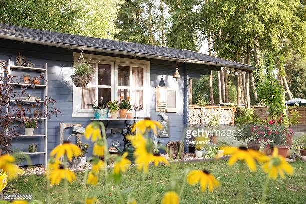 Germany, Eggersdorf, garden shed and flowers