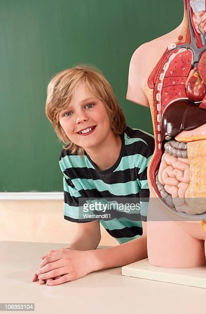 Germany, Emmering, Boy (12-13) with human organs model, smiling, portrait
