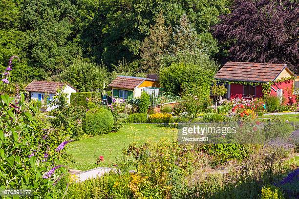 germany, esslingen, garden allotments with summer houses - self sufficiency stock pictures, royalty-free photos & images