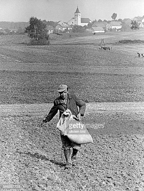 Germany famer sowing the field in the fifties