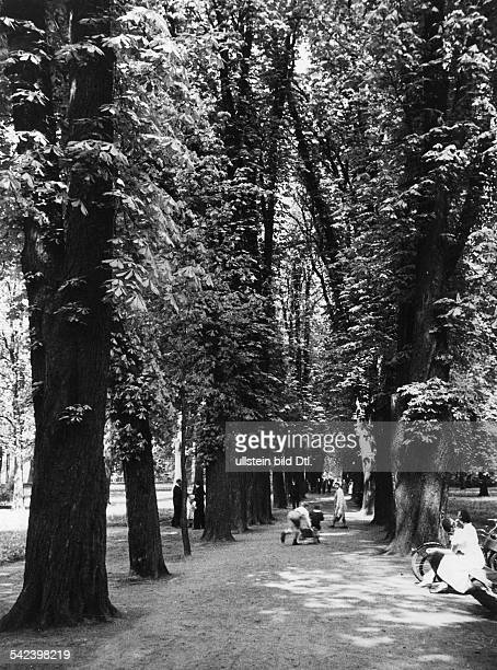 Germany Free State Prussia Berlin Berlin alley with promendaders in the Park Hohenschoenhausen 1937 Photographer SeidenstueckerVintage property of...