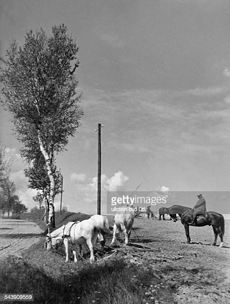 Germany Free State Prussia East Prussia Province Masuria farmers with horses and carts near Olecko 1934 Photographer Seidenstuecker Vintage property...