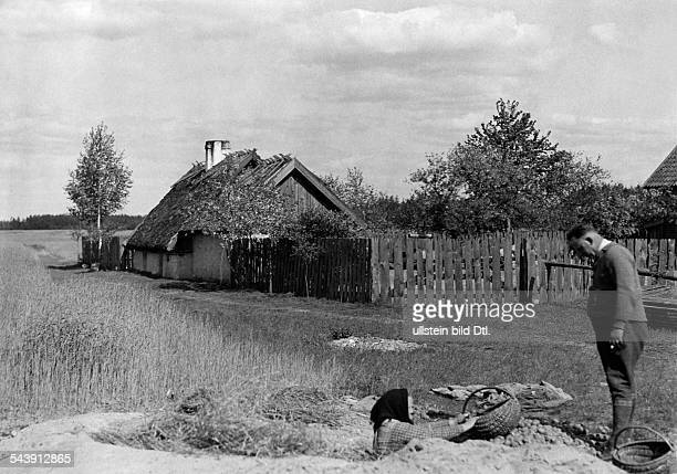 Germany Free State Prussia East Prussia Province Masuria old woman taking potatos out of an underground storage place 1933 Photographer...