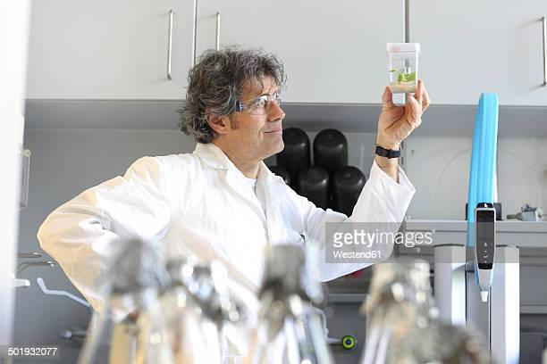 Germany, Freiburg, Scientist in laboratory evaluating samples