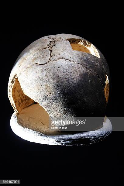 Germany, Hagen: This male skull is approx. 10.700 years old and part of the so-called Lenni Stein Hagen findings
