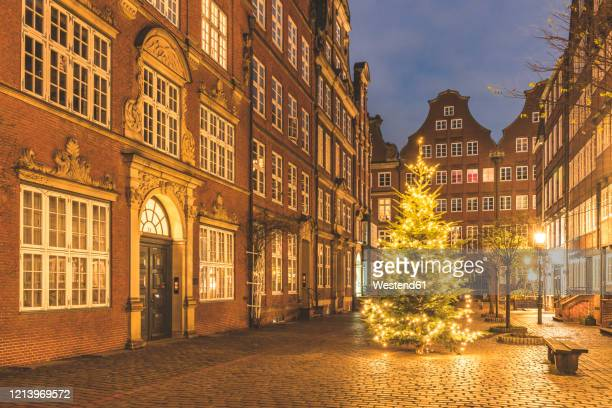 germany, hamburg, christmas tree glowing in middle of peterstrasse at dusk - hamburg germany stock pictures, royalty-free photos & images