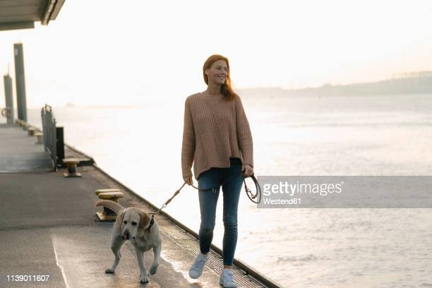 germany, hamburg, woman walking with dog on pier at the elbe shore - waterfront stock pictures, royalty-free photos & images