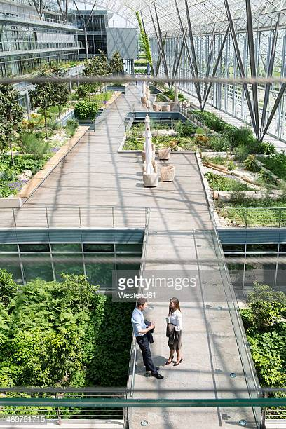 germany, hannover, business people standing in greenhouse - lower saxony stock pictures, royalty-free photos & images