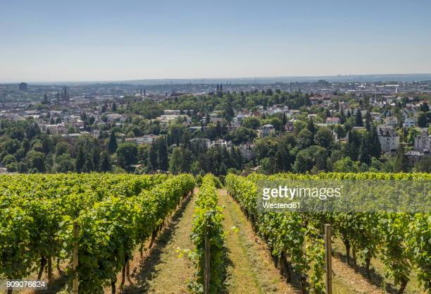Germany, Hesse, Wiesbaden, View from Neroberg