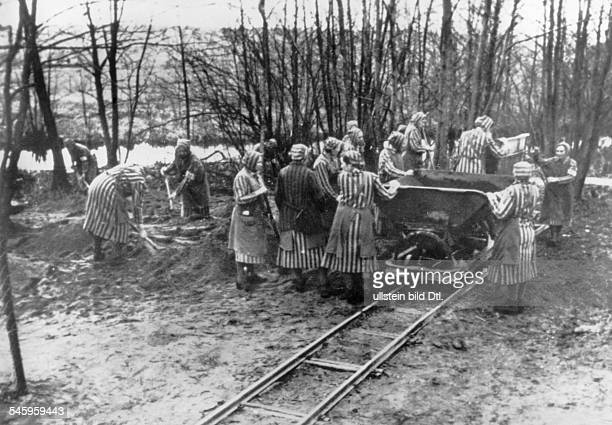 Germany III Reich 193345 Concentration camps /Women inmates working at the concentration camp near Ravensbruck Germany Undated photograph 1943/44