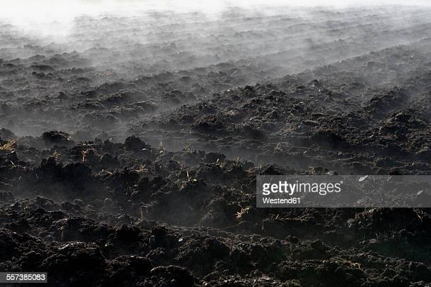 Germany, Koenigsdorf, fog above field in autumn