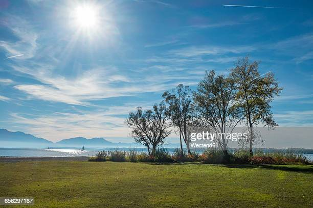 Germany, Lake Chiemsee, Seebruck, trees at the lakeside