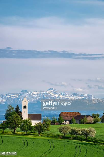 germany, lake constance district, st. michael's church near ueberlingen, swiss alps with saentis in the background - michael stock photos and pictures