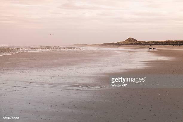 Germany, Langeoog Island, coastal landscape