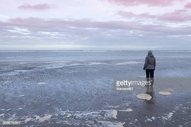 germany, langeoog island, woman at the coast - insel langeoog stock-fotos und bilder