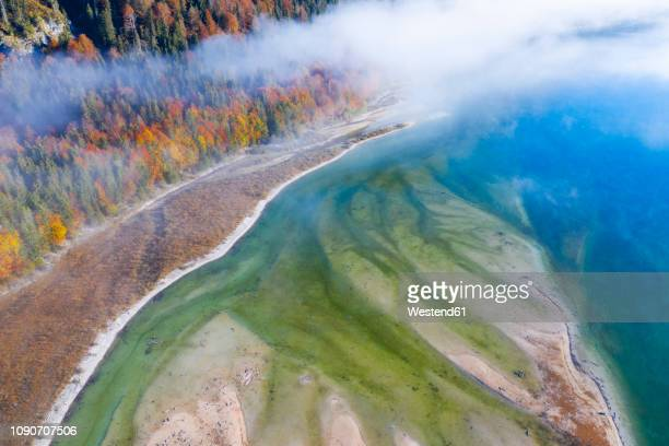 germany, lenggries, isarwinkel, aerial view of isar river, at tributary into sylvenstein dam in autumn - fiume isar foto e immagini stock