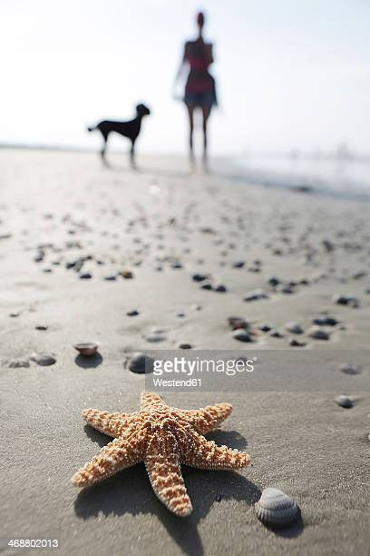 germany, lower saxony, east frisia, langeoog, sea star and silhouette of a woman and her dog at the beach - insel langeoog stock-fotos und bilder
