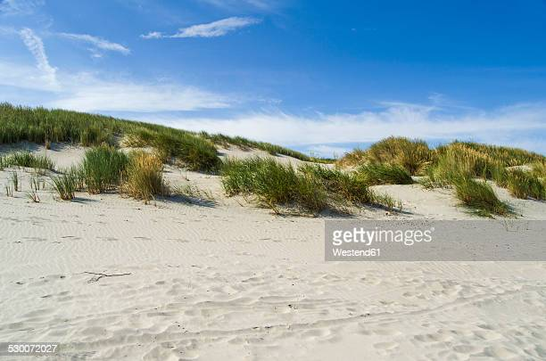 Germany, Lower Saxony, East Frisian Island, Juist, dune landscape