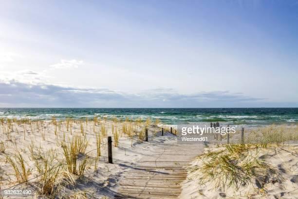 Germany, Mecklenburg-Vorpommern, Rerik, way to the beach