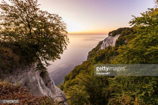 germany, mecklenburg-west pomerania, ruegen island, jasmund national park, chalk cliffs and baltic sea at sunset - 炭酸石灰 ストックフォトと画像