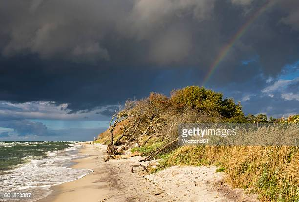 germany, mecklenburg-western pomerania, rain clouds and rainbow over baltic sea beach in born auf dem darss - fischland darss zingst photos et images de collection
