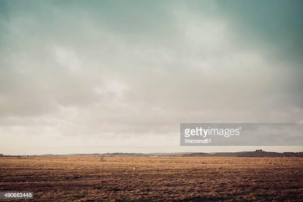 Germany, Mecklenburg-Western Pomerania, Ruegen, Fields landscape in winter