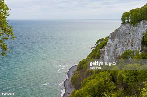 Germany, Mecklenburg-Western Pomerania, Ruegen, Jasmund National Park, Chalk coast at Koenigsstuhl