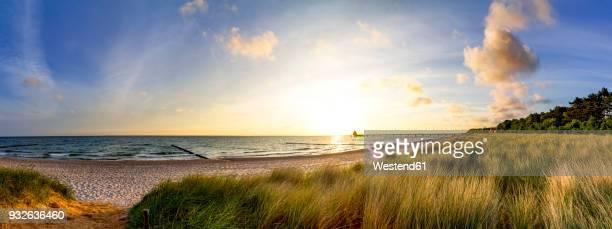 Germany, Mecklenburg-Western Pomerania, Zingst, beach at sunset