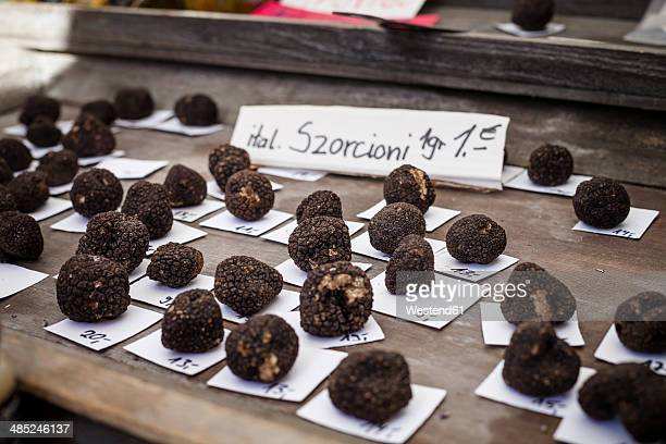 Germany, Munich, market stall with black truffels at Viktualienmarkt