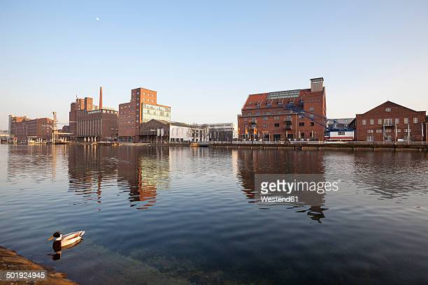 Germany, North Rhine-Westphalia, Duisburg, inner harbour, view to Kueppersmuehle and Werhahnmuehle
