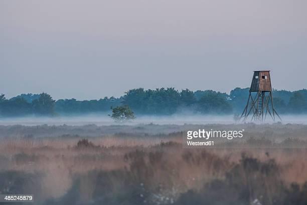 Germany, North Rhine-Westphalia, Recker Moor, Landscape with raise hide in morning fog