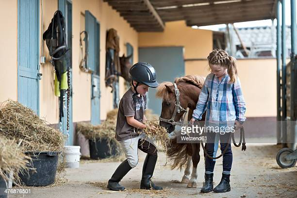 germany, nrw, korchenbroich, boy and girl at riding stable with mini shetland pony - equestrian helmet stock pictures, royalty-free photos & images