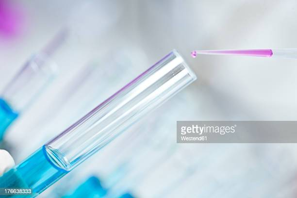 Germany, Pipetting pink liquid into test tubes, close up