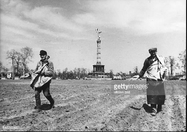Germany Post War Years Agriculture in Berlin 194549 Sowing vegetable seeds around Berlin Victory Column 1947