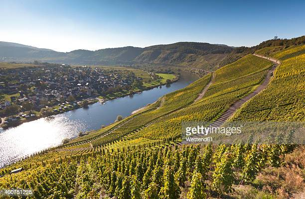 Germany, Rhineland Palatinate, View of vineyards at Punderich