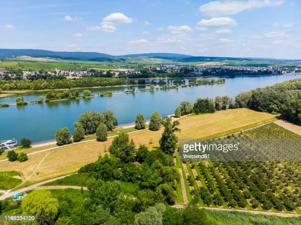germany, rhineland-palatinate, aerial view of heidesheim am rhein, rhine river and eltville - hesse duitsland stockfoto's en -beelden