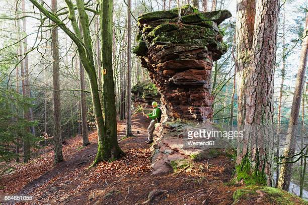 germany, rhineland-palatinate, hiker reading map at dahn rockland on winter day - nature reserve stock pictures, royalty-free photos & images