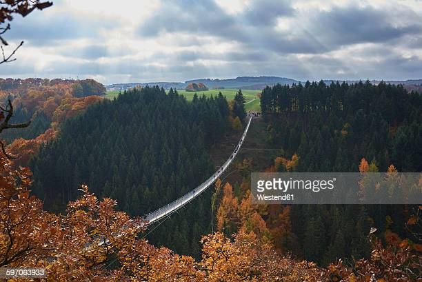 Germany, Rhineland-Palatinate, Hunsrueck, Saar-Hunsrueck-Steig, Swing Bridge Geierlay