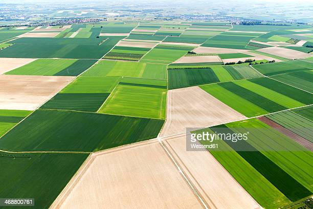 Germany, Rhineland-Palatinate, Ingelheim, View of field landscape, aerial photo
