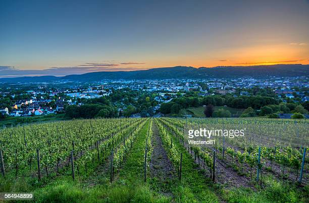 Germany, Rhineland-Palatinate, Trier at blue hour