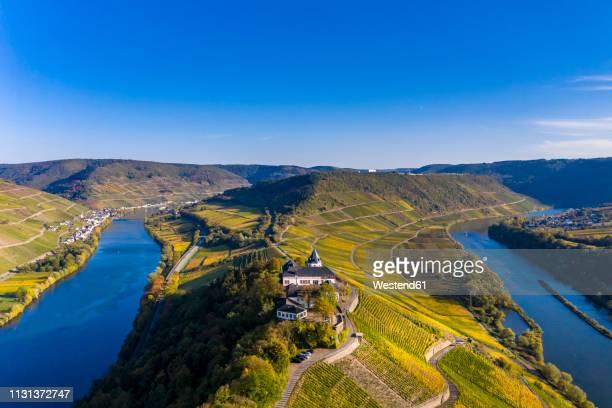 germany, rhineland-palatinate, vineyards and marienburg near puenderich, moselle river - moseltal stock-fotos und bilder