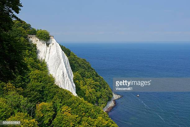 germany, ruegen, jasmund national park, chalk cliff koenigsstuhl - 炭酸石灰 ストックフォトと画像