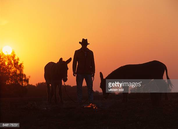 Germany Saxony Man with cowboy hat and two donkeys during sunset