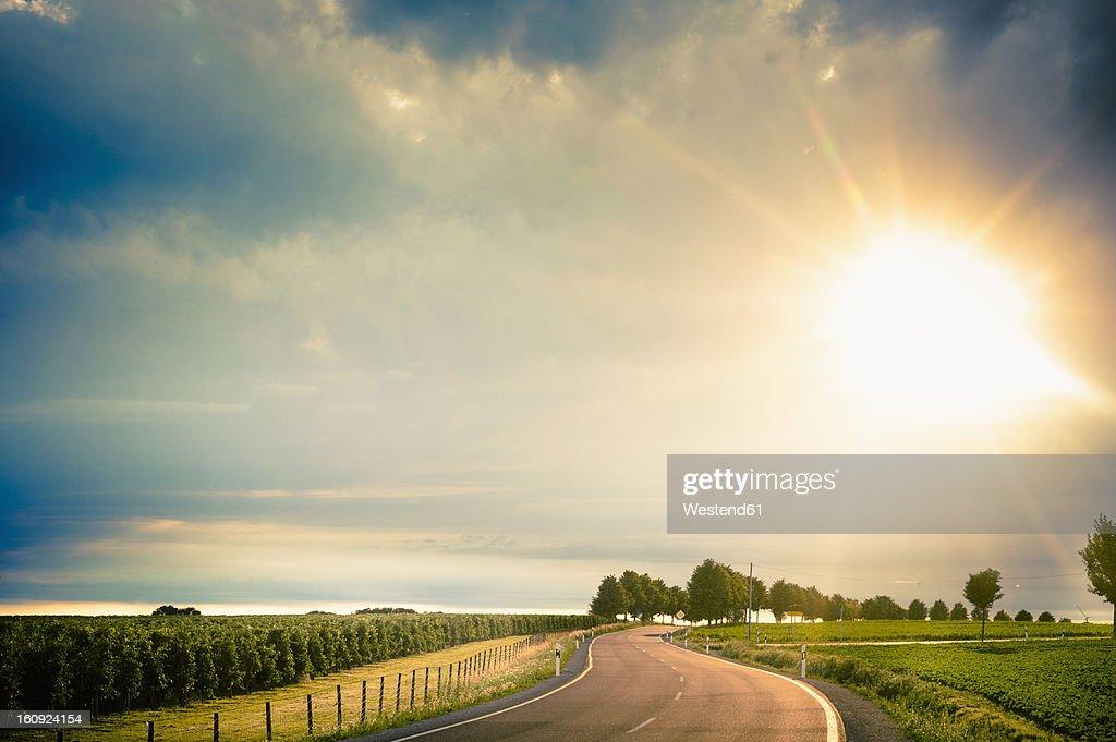 Germany, Saxony, Road through farm land : Stock Photo